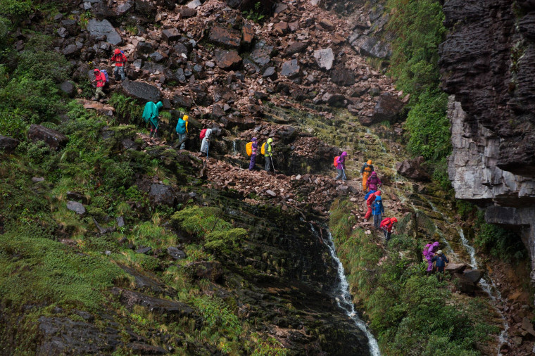 Image: Tourists walk down from the top of Roraima Mount, near Venezuela's border with Brazil