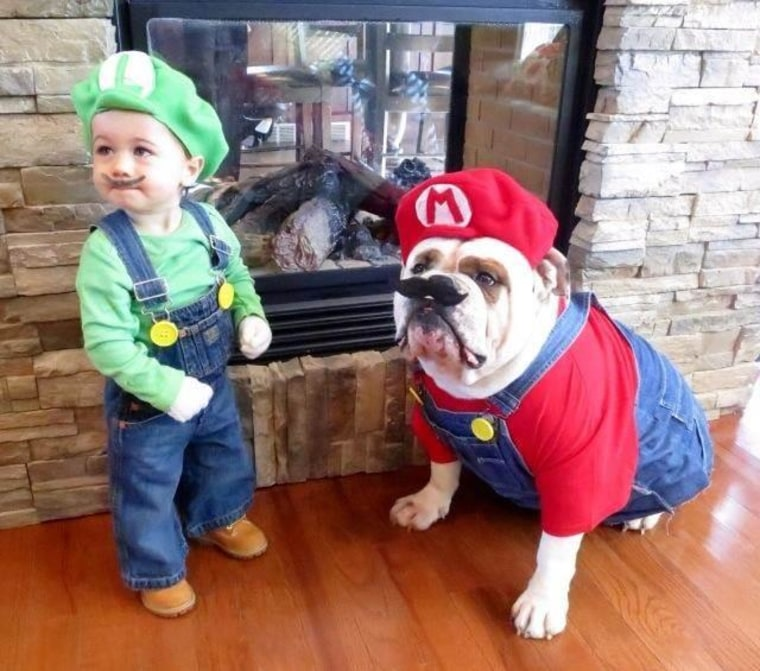 mario and luigi halloween costume