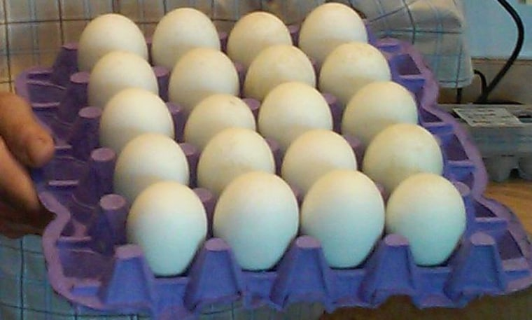 The fresh unfertilized duck eggs rule during the Lunar New Year, leading in sales over the fertilized duck embryos.