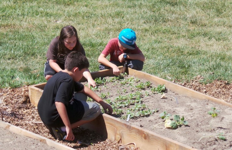 Students at MUSE school grow their own vegetables.