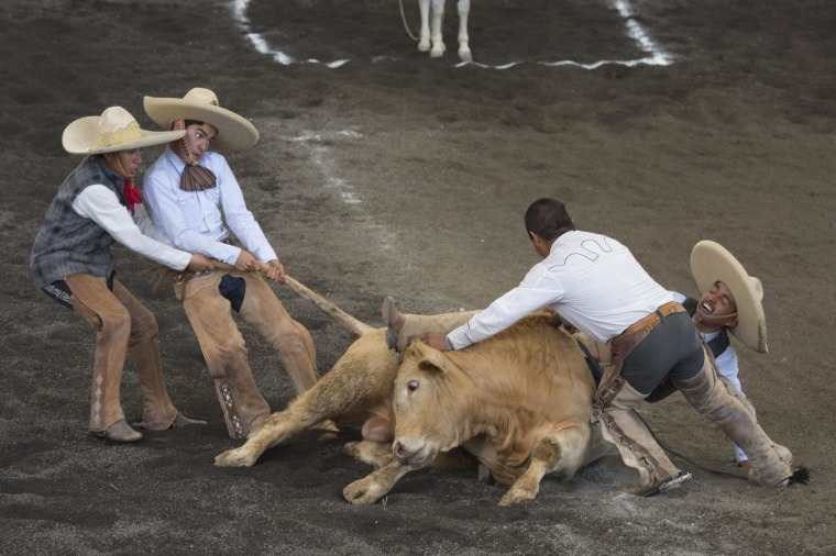 Image: Charros lift bull off trapped leg of a teammate
