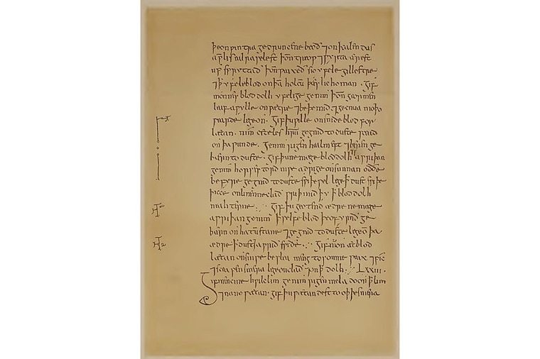 Page from Bald's Leechbook, an Old English medical text.