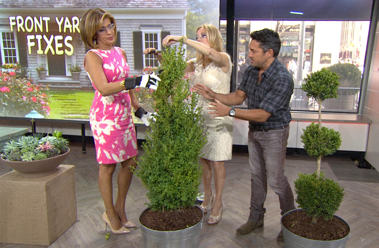 Jamie Durie gardening on TODAY