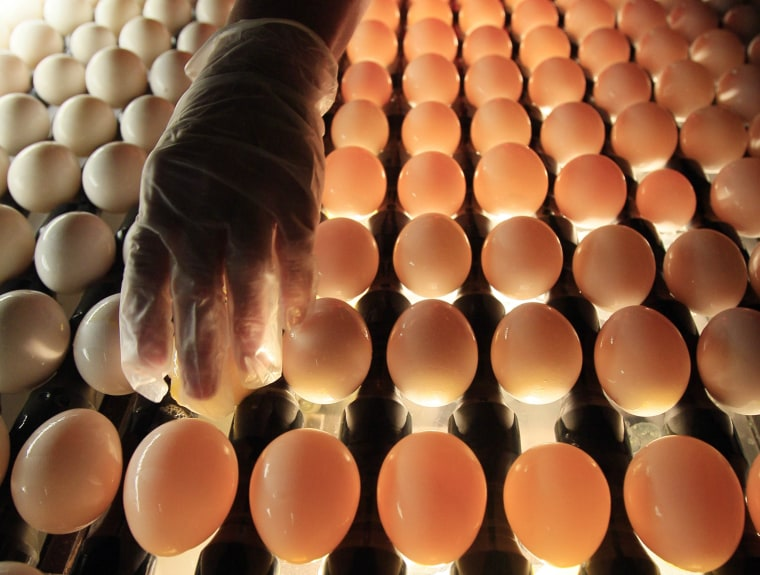 A United States Department of Agriculture inspector checks eggs at Quality Egg of New England ( Robert F. Bukaty / AP file)