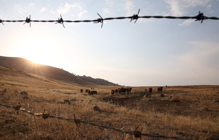Image: California's Central Valley Heavily Impacted By Severe Drought