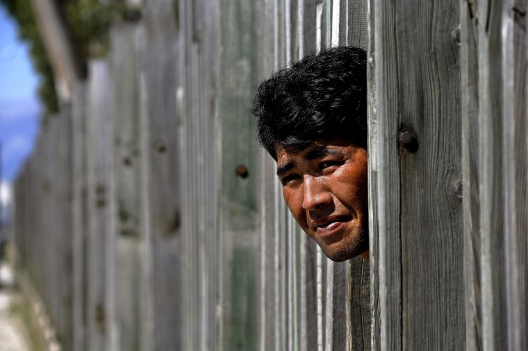 An Afghan immigrant looks through a wooden fence in a factory as he prepares to make a run towards the ferry terminal in the western Greek town of Patras May 4, 2015.
