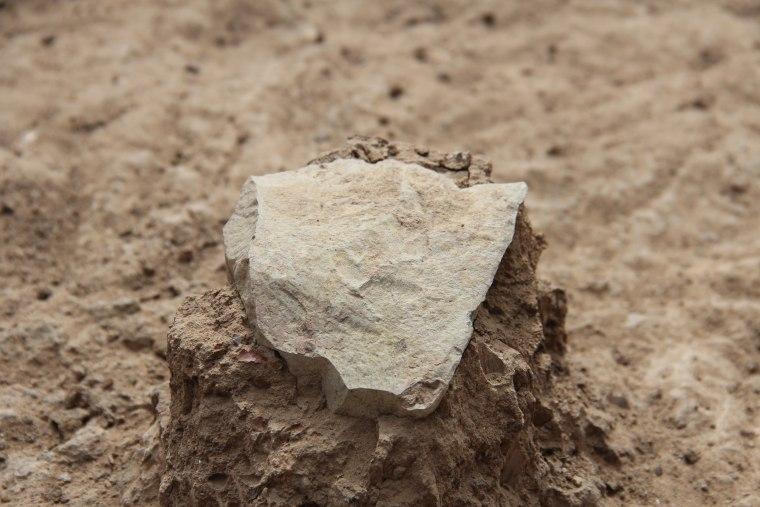 Image: Stone tool