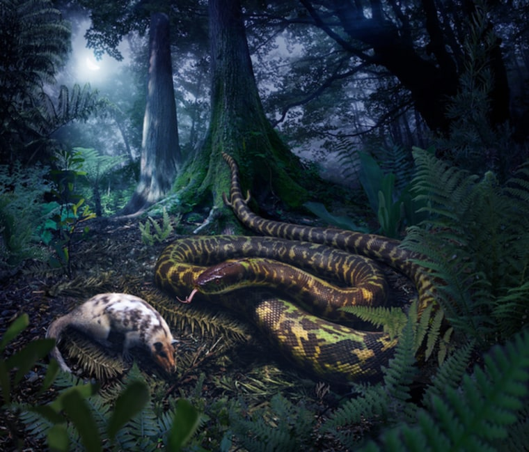 Image: Artist's interpretation of ancestral snake