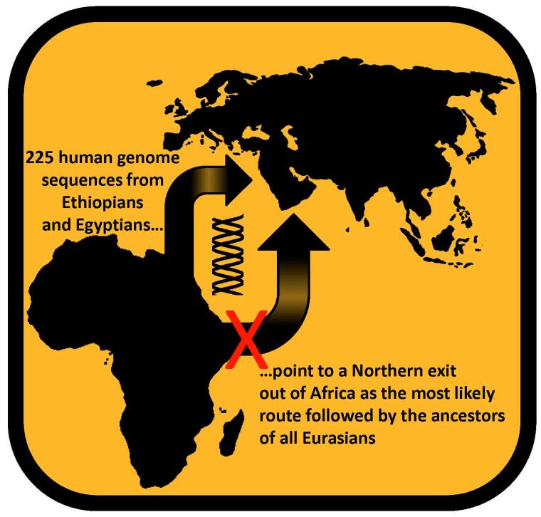 Image: Africa migration
