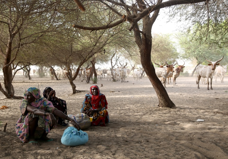 Refugees and displaced people rest in the shade amid temperatures of around 110 degrees on Koulfoua island in Lake Chad.