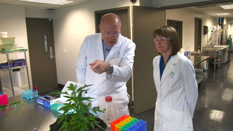 Harry Smith touring CW Botanicals laboratory in Colorado Springs, Colorado with Bear Reel, the lead botanist.