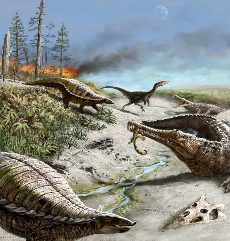 Early carnivorous dinosaurs (background) were small and rare, while other reptiles like long-snouted phytosaurs and armored aetosaurs (foreground) were common, 212 million years ago in what is now northern New Mexico.