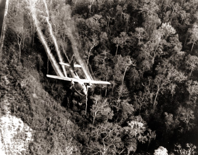 A U.S. Air Force C-123 flies low along a South Vietnamese highway spraying defoliants on dense jungle growth beside the road to eliminate ambush sites for the Viet Cong during the Vietnam War in May 1966.