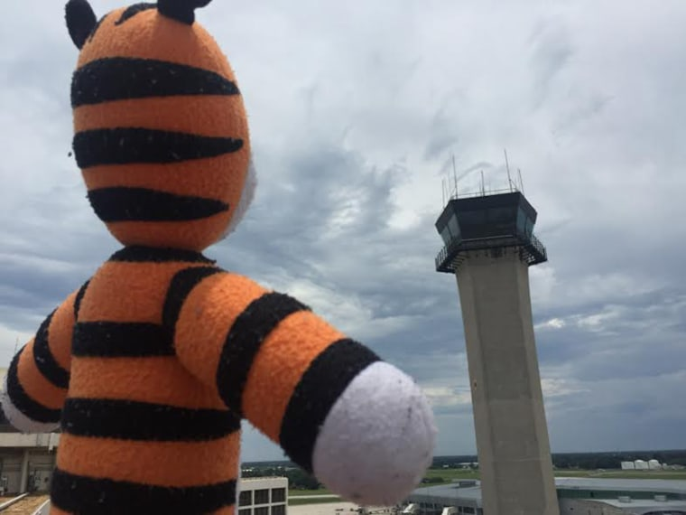 Boy's lost stuffed tiger has experience of a lifetime while spending 6 days at the airport