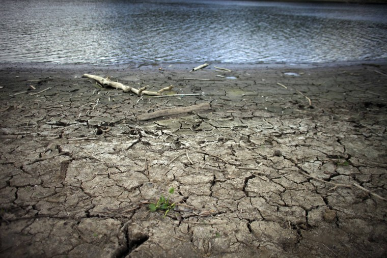 This June 15, 2015 photo shows mud cracks at the drought affected Carraizo reservoir in Trujillo Alto, Puerto Rico. Thanks to El Nino, a warming of the tropical Pacific Ocean that affects global weather, the worst drought in five years is creeping across