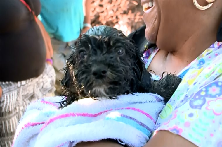 Firefighters in Buffalo, New York go to extremes to rescue tiny puppy trapped in sewer drain. WGRZ's Maryalice Demler reports.