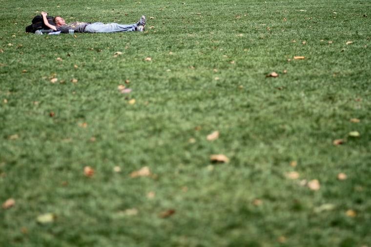 Image: lawn