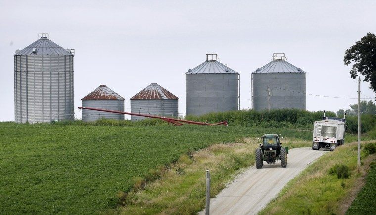FILE - In this Aug. 5, 2014 file photo a farmer drives his tractor past a soybean field toward grain storage bins near Ladora, Iowa. U.S. agriculture has a big appetite for freer trade with Cuba, and soybeans are one of the main products Cuba now buys from the United States. (AP Photo/Charlie Neibergall, File)