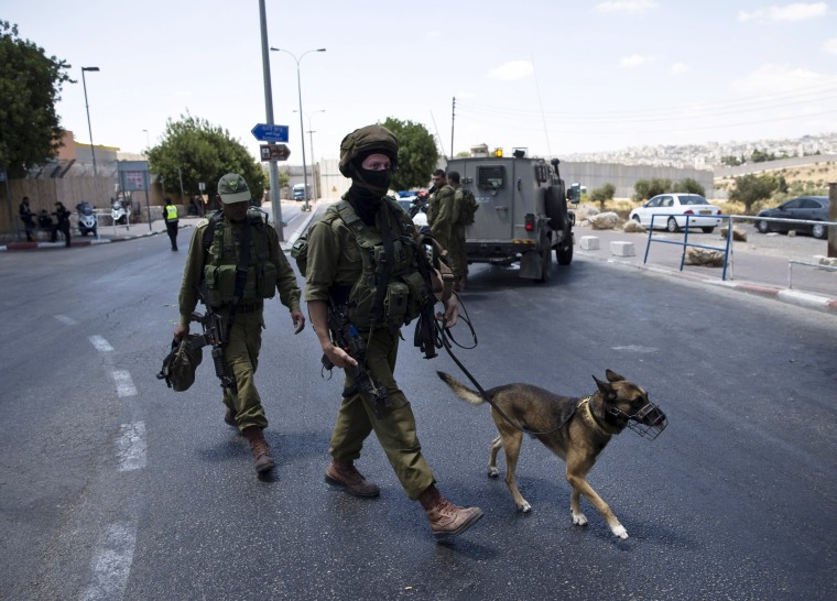 Image: Israeli soldiers walk with a dog next to an Israeli checkpoint near Bethlehem