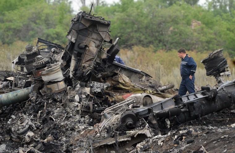 Image: Site of the MH17 crash in Ukraine