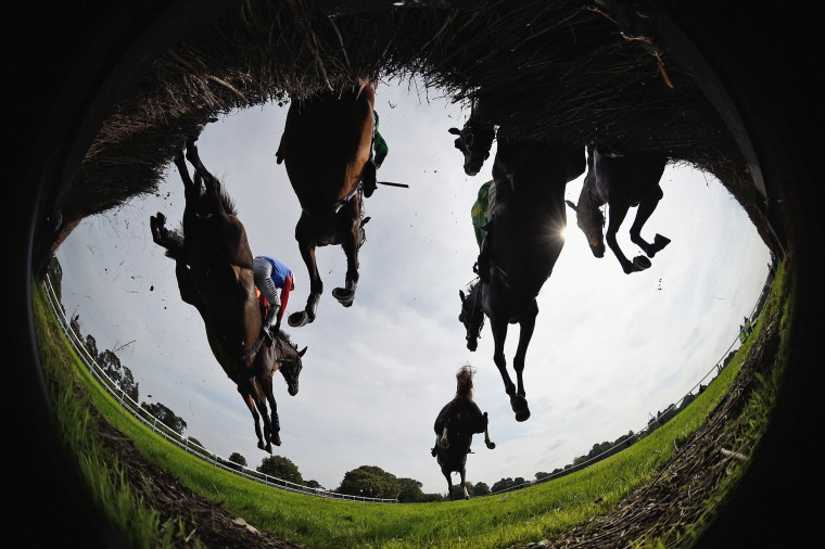 Horses and riders negotiate the first fence during the Maureen Sturt Ladies Day Novices' Handicap Chase at Fontwell Park on August 13, 2015 in Fontwell, England.
