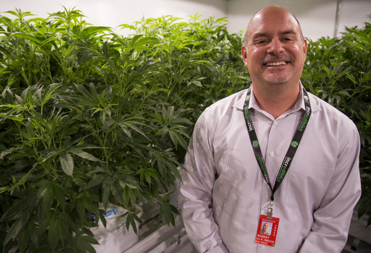 Bob Eschino, president and co-founder of Incredibles, stands with his marijuana plants.
