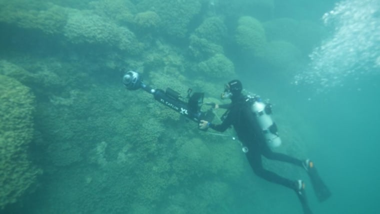 A member of the XL Catlin Seaview Survey investigates the health of the coral reef in Kaneohe Bay, Oahu, where warming ocean temperatures are already causing the coral to lose their living tissues and die in a process called 'coral bleaching.'