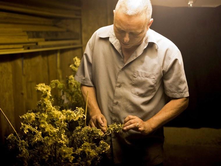 Joe Mascaro, a medical marijuana patient, grows legal marijuana for a handful of friends in his basement.