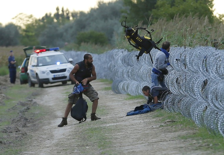 Image: Hungarian police positioned nearby watch as Syrian migrants climb under a fence to enter Hungary at the Hungarian-Serbian border near Roszke