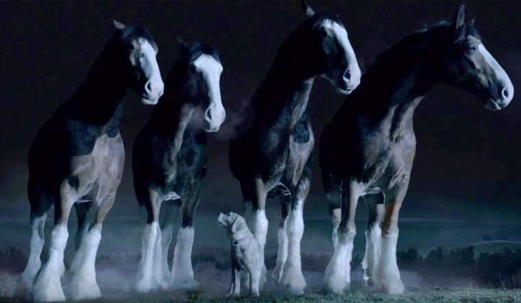 The Budweiser Clydesdales and a puppy made this Super Bowl ad a popular online draw.