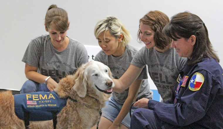 Bretagne, the 9/11 search dog from Ground Zero, turns 16