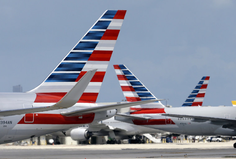American Airlines Plane Lands After Captain Gets Sick Mid-Flight