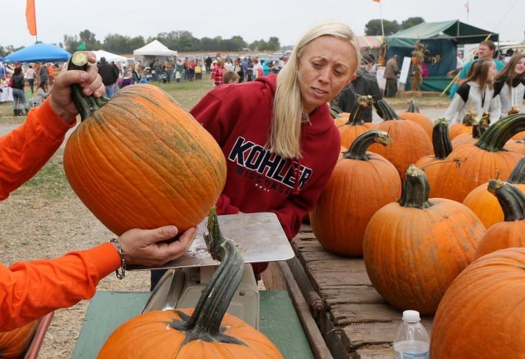 Image: Relleke's Pumpkin Patch