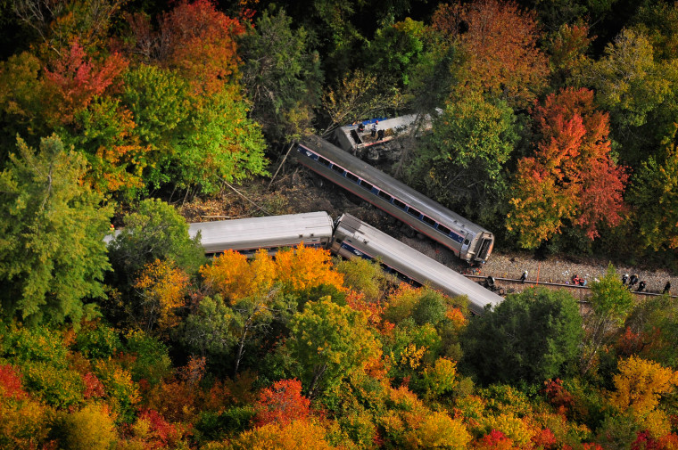 Image: Railroad passenger cars from a derailed Amtrak passenger train are surrounded by foliage