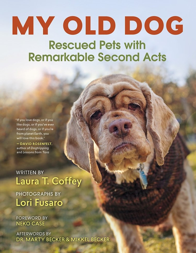 "Book cover for ""My Old Dog: Rescued Pets with Remarkable Second Acts"""