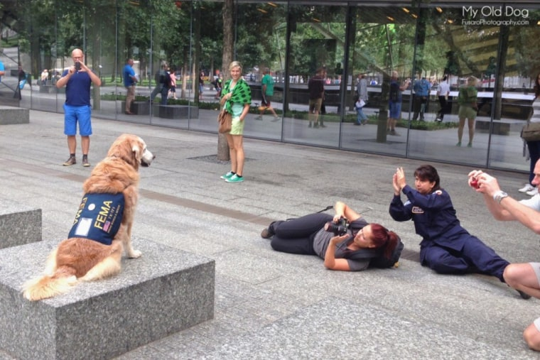 "Lori Fusaro photographs Bretagne for the ""My Old Dog"" book with Denise Corliss' help at the 9/11 Memorial in September 2014."