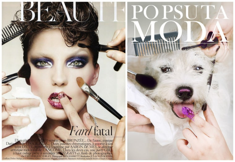 An ad campaign re-created some of the most iconic magazine covers featuring shelter animals