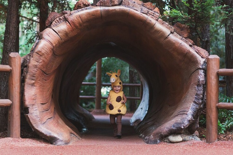 Immersing your child in their character's environment can be a lot of fun for them.