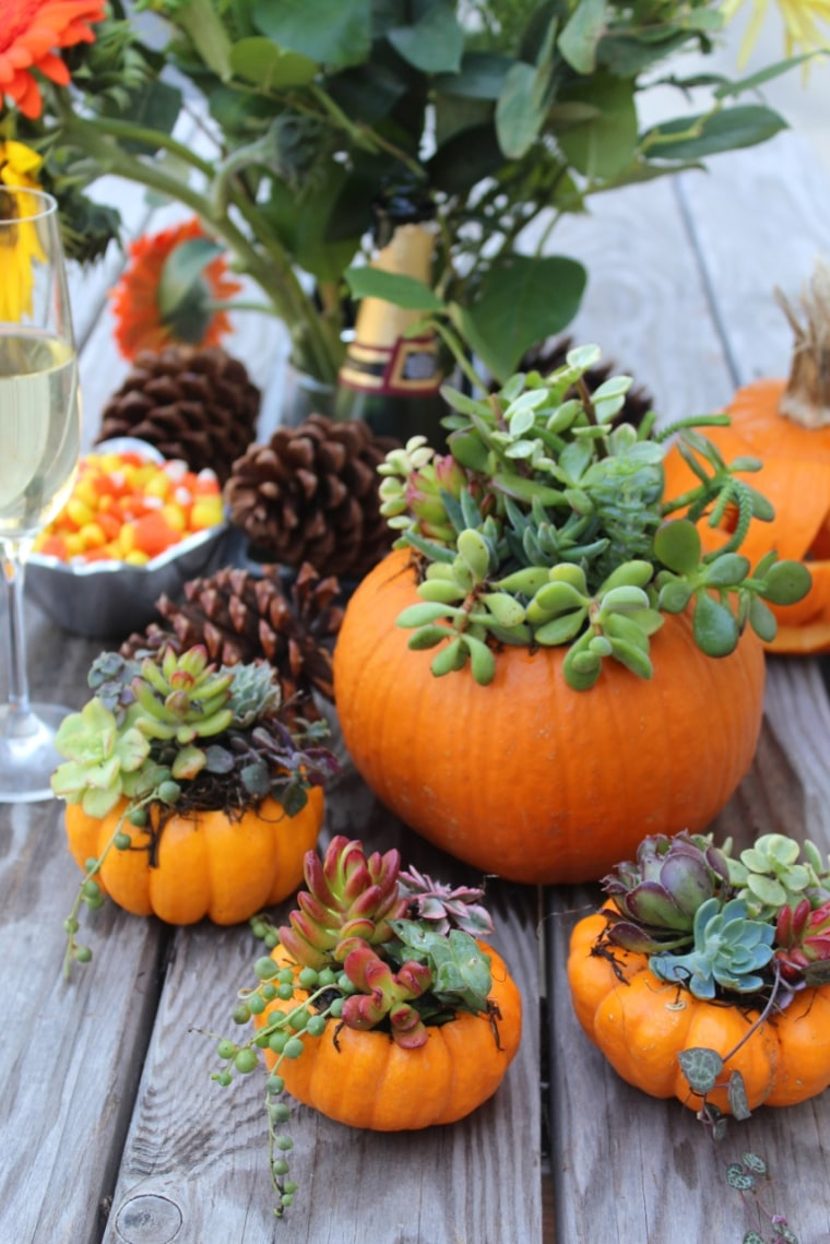 Holiday decorating succulent-filled pumpkins
