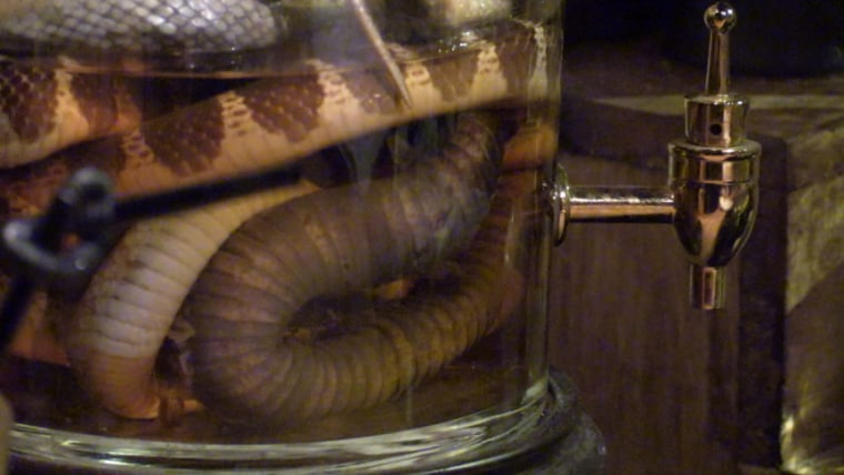 Image: Baijiu that comes with dead snakes suspended in the serving jar