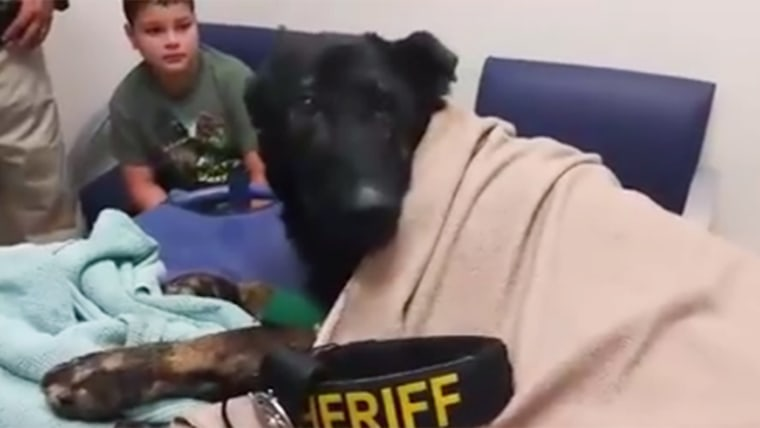 Beloved police dog receives his last call before he died.