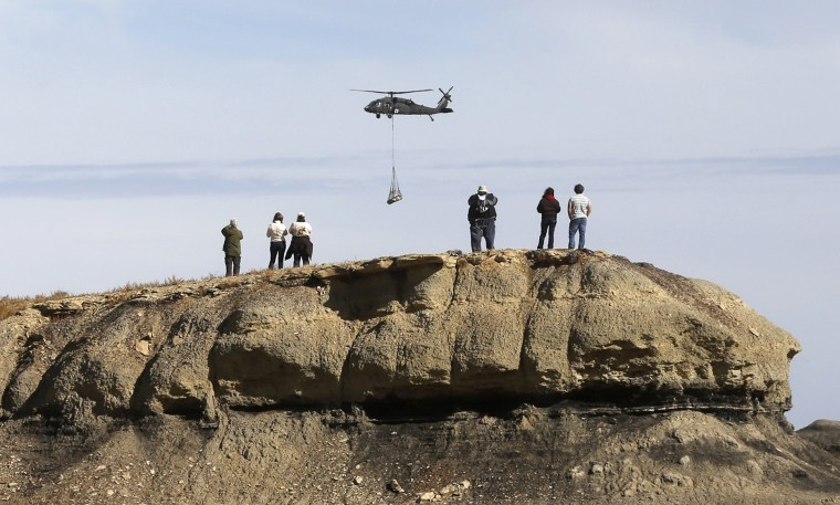 Image: A group of people watch as a helicopter carries remains of an adult Pentaceratops