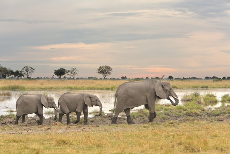 Botswana: Lonely Planet reveals is 2016 list of top travel destinations