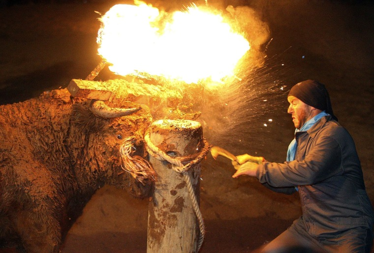 Image: A bull with a set of burning torches attached to its horns chases participants in Medinaceli