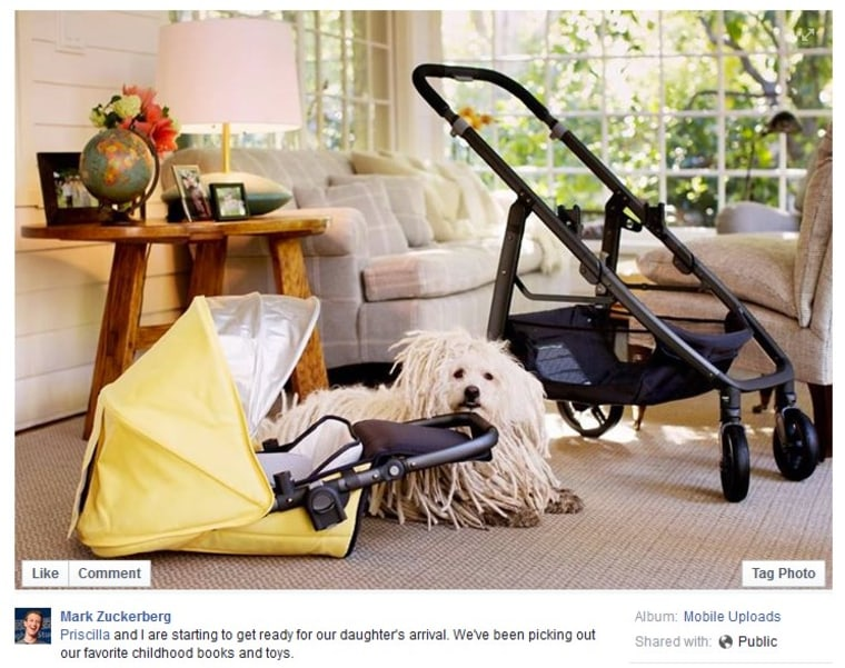 Image: Mark Zuckerberg photo of baby carriage and dog