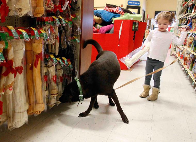 Bills Rise As Pet Vets Get More Corporate