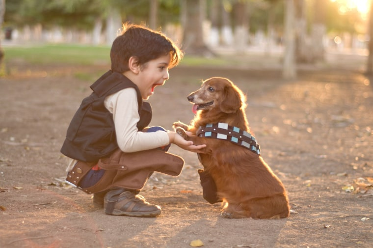 Image: kid with a dog