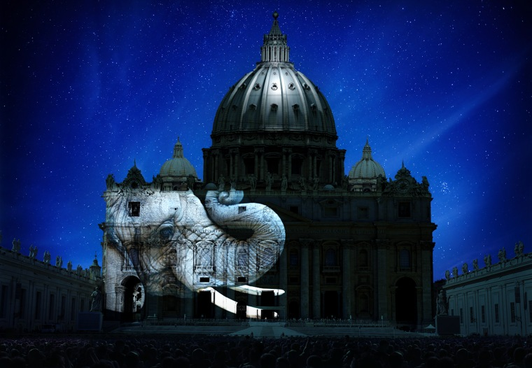 This rendering of picture to be projected on the façade of St. Peter's Basilica is aiming at raising awareness of climate change and endangered species.