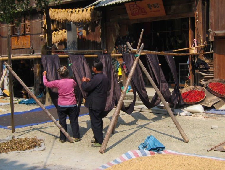 Dong minority grandmothers drying handwoven indigo-dyed cotton cloth.