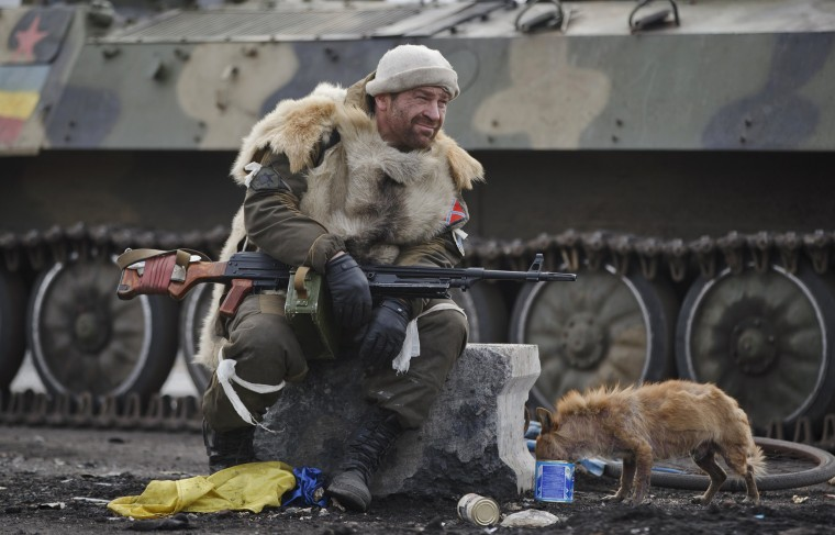 Image: A Russia-backed rebel rests as a dog eats from a can in Debaltseve